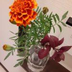 ハロウィンコーデでトイレに生花を飾ってみた!